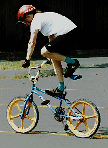 Sheldon Brown S Bicycle Page